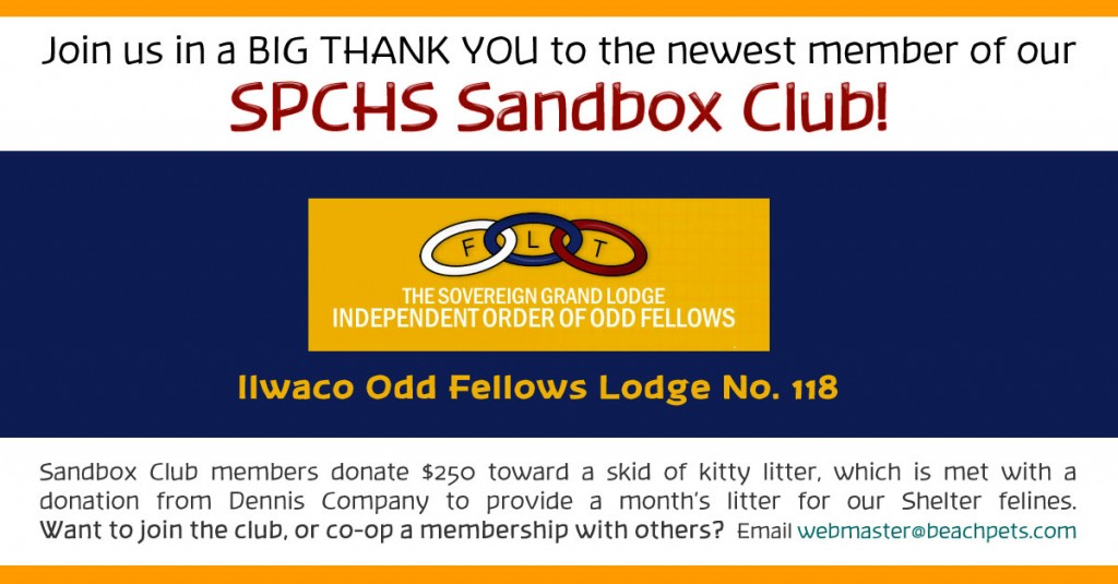 Sandbox-Club--oddfellows