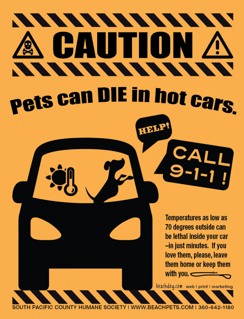 Pets Can Die in Hot Cars