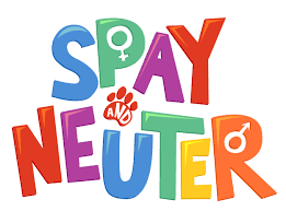 About Spay/Neuter