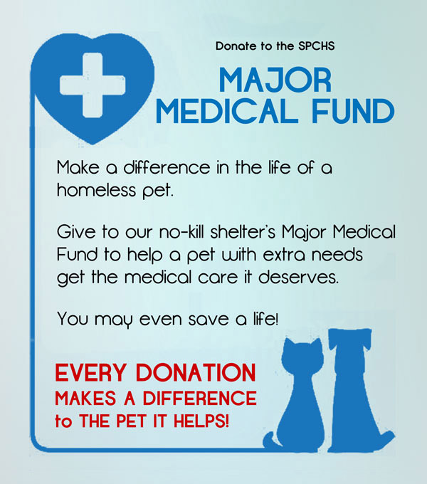 homeless pets med fund