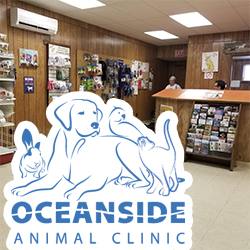 Oceanside Animal Clinic