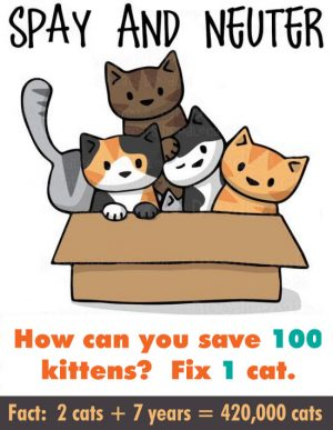 How can you save 100 kittens? Fix 1 cat. spaying and neutering works.