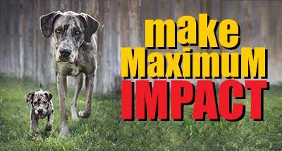 make maximum impact