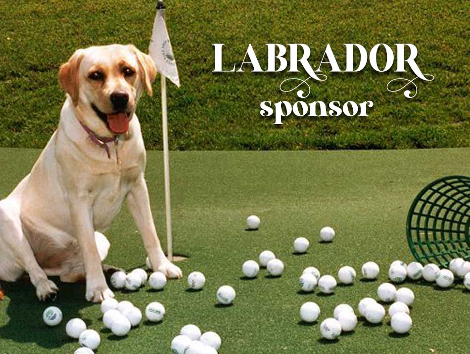 Labrador Sponsors