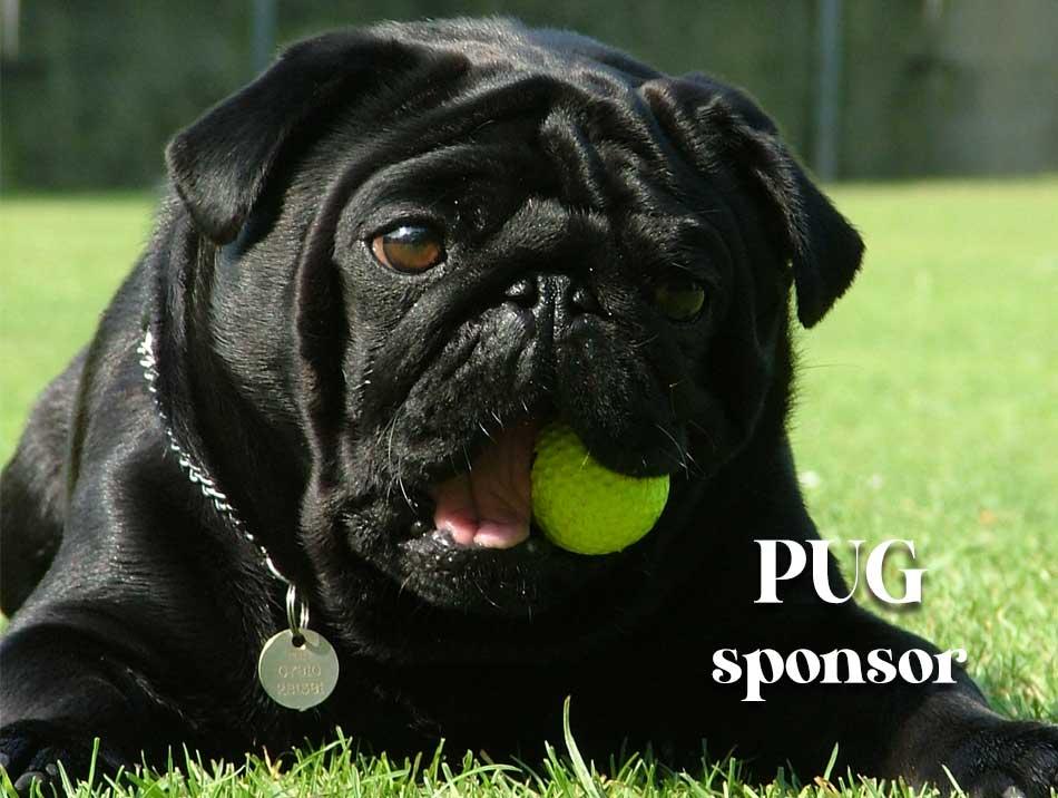 Pug Sponsors
