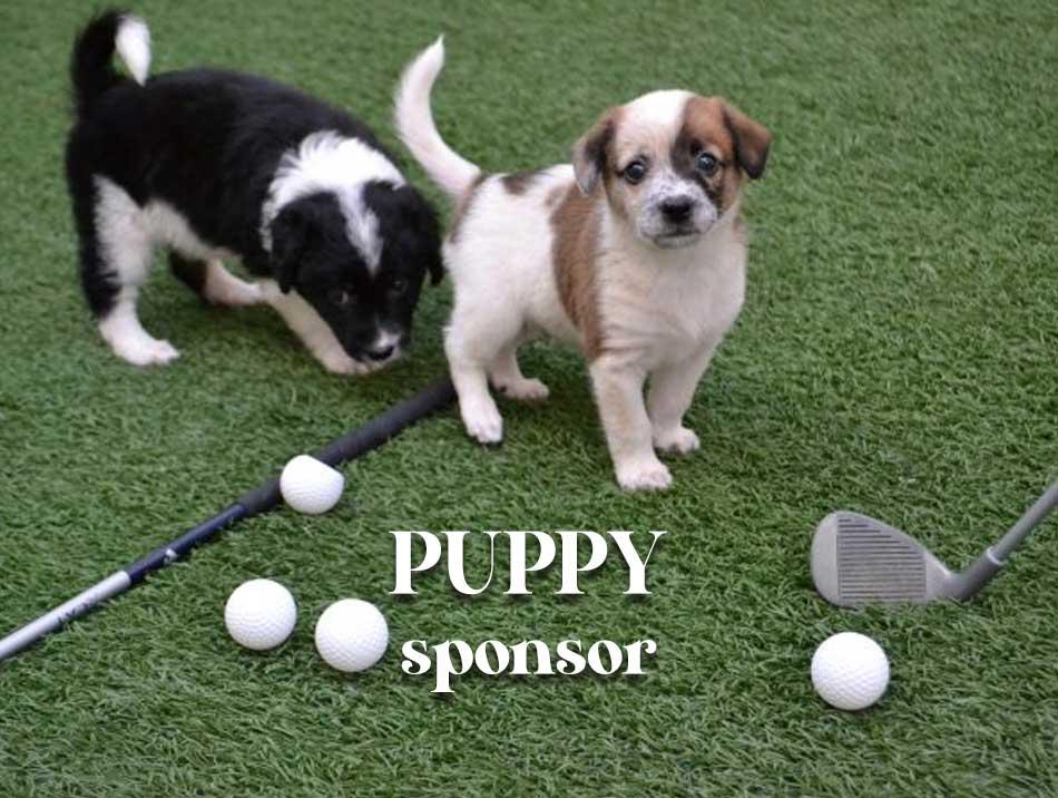 Puppy Sponsors
