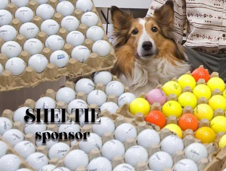 Sheltie Sponsors